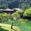 voyage au Japon jardin