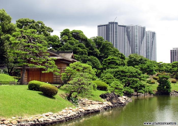 Visiter Tokyo : des promenades pour découvrir la ville