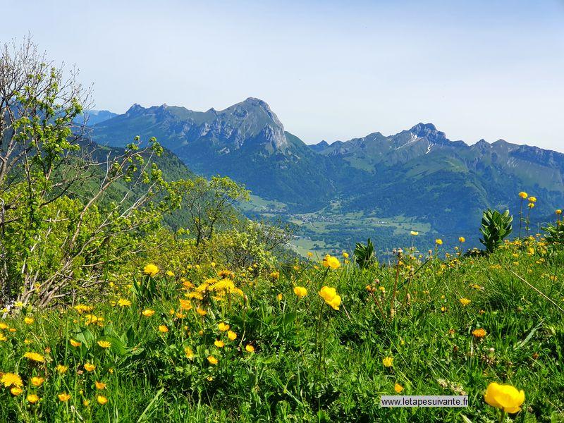A la fin du printemps et au début de l'été, les alpages sont couverts de fleurs.