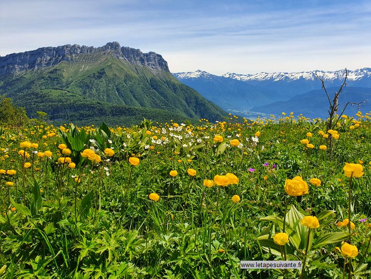 Au sommet du Mont Morbié, on a une vue panoramique sur plusieurs massifs environnants